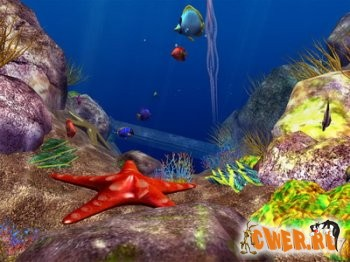 Ocean Fish 3D Screensaver 3.0
