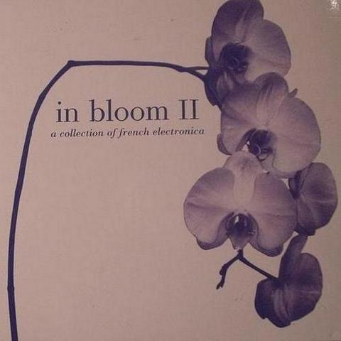 In Bloom II. A Collection Of French Electronica (2003)
