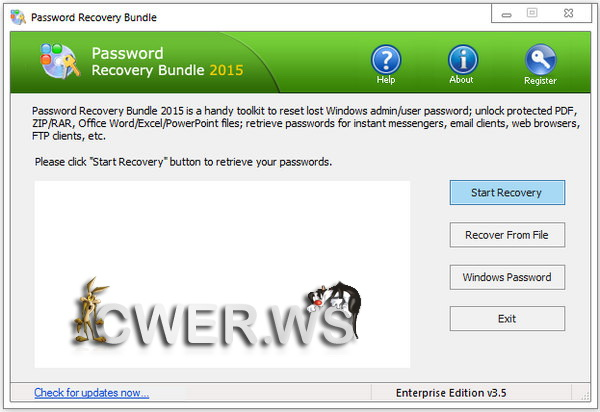 Password Recovery Bundle 2015 Enterprise Edition