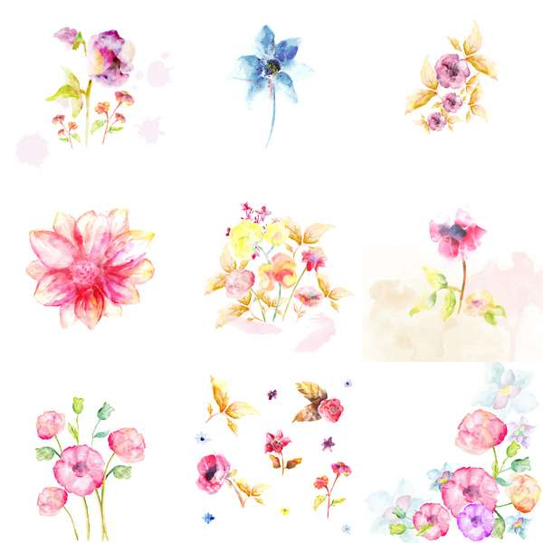 Watercolor flowers (Cwer.ws)