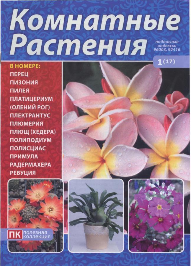 Книга про комнатные цветы скачать бесплатно