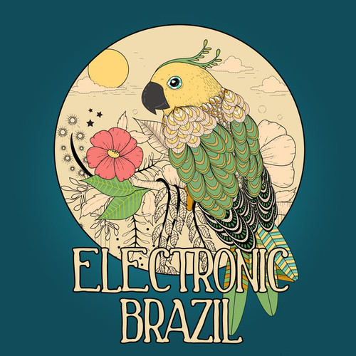 Electronic Brazil Vol.1: Brazilian Flavoured Lounge Tunes