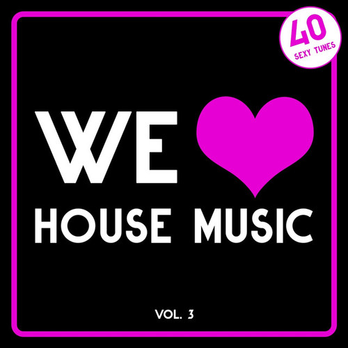 We Love House Music Vol.3: 40 Sexy Tunes