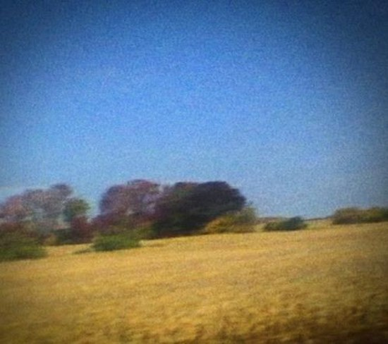 Sun Kil Moon. Benji: Limited Edition (2014)