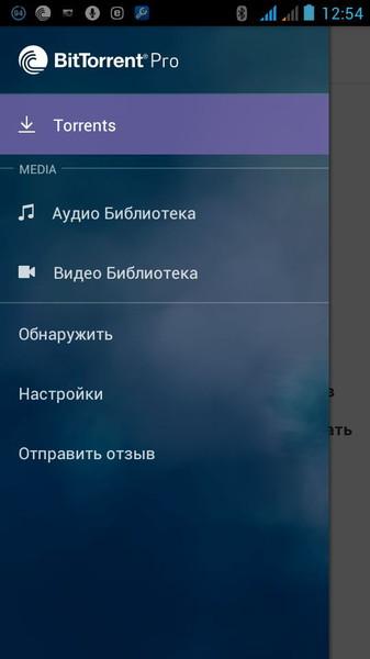 BitTorrent Pro1