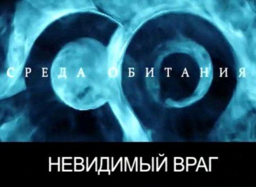 konchayushie-krasotki-video